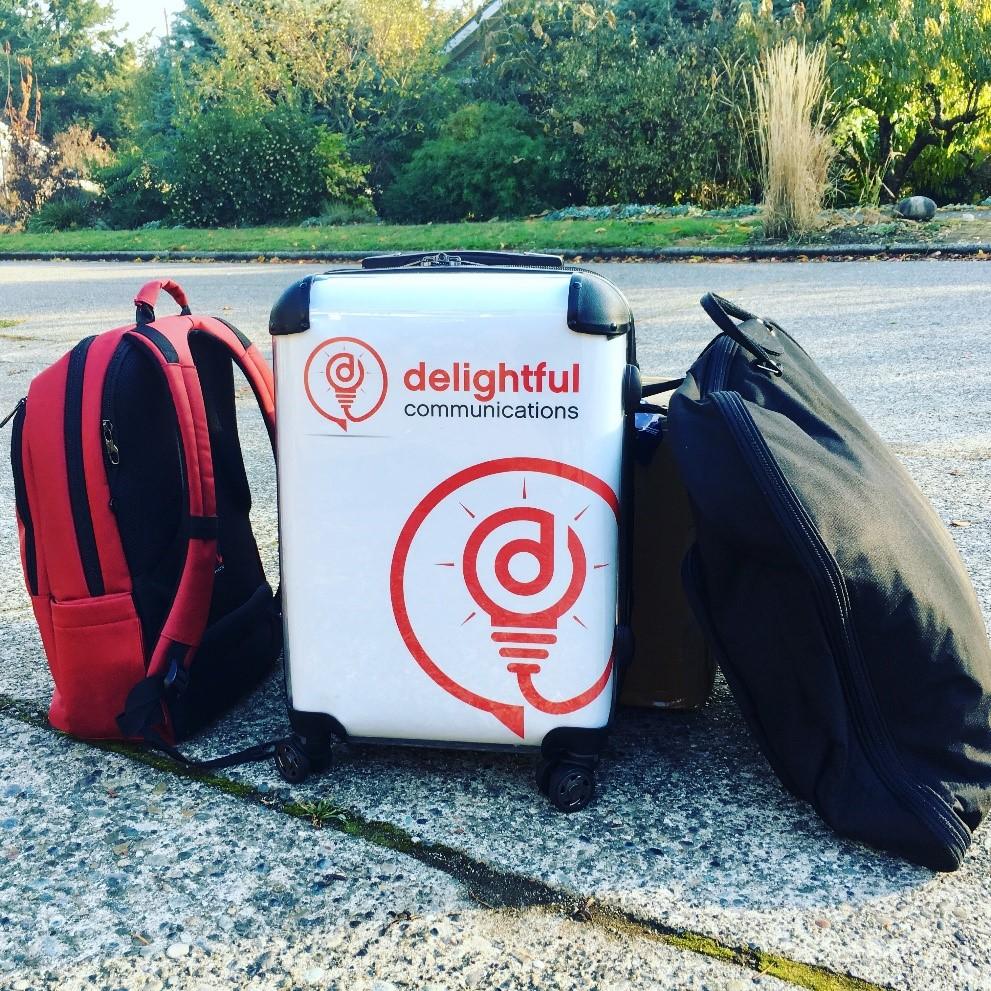mel-carson-delightful-luggage